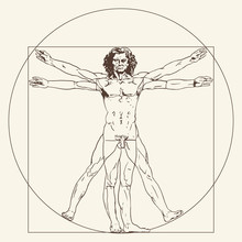 The Vitruvian Man. Le Proporzioni Del Corpo Umano Secondo Vitruvio. The Proportions Of The Human Body According To Vitruvius.
