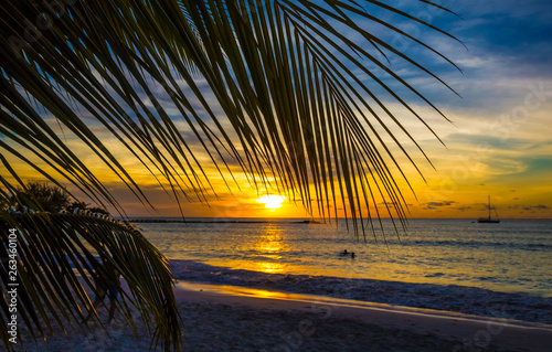 Fotografie, Tablou Coastal Sunset in Caribbean with Palm Leaf
