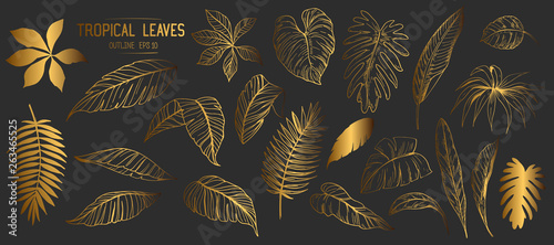 mata magnetyczna Set of tropical leaves. Hand drawn sketches traced in vector
