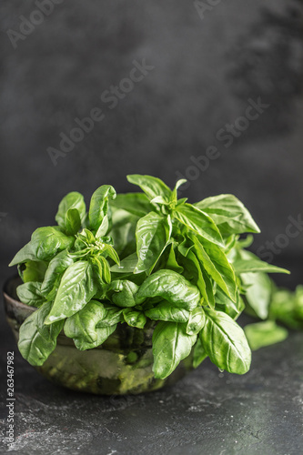 Fototapeta Fresh basil on a stone and dark background. Green basil. Food background. Basil plant for healthy cooking obraz na płótnie