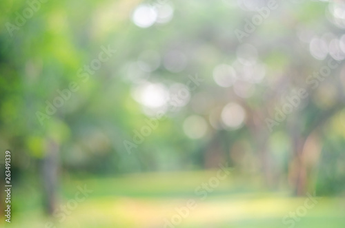 blur green bokeh lush garden park outdoor in nature abstract background. - 263491339