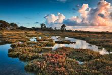 Sunset In The Salt Marshes Of Carboneros, In Chiclana De La Fontera, Spain