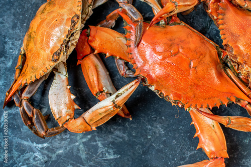 Photo steamed whole blue crabs on wet marble background flat lay