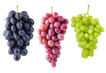 Purple Red And Green Grape, Is...