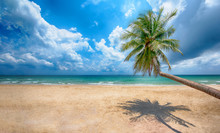 Beautiful Tropical Ocean And Beach, Amazing Tropical Palm Tree Leaning Over The Ocean With Blue Sky,Thung Wua Laen Beach, Chumphon,Thailand.- Image