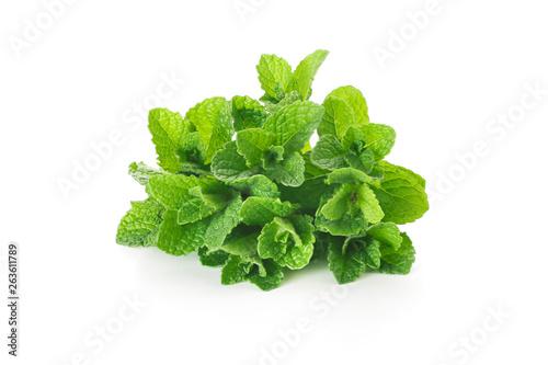 Obraz fresh green leaves of mint on a white background - fototapety do salonu