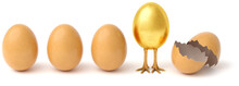 Row Of Chicken Eggs. One Golden Egg With Golden Chicken Feet And One Broken Egg Shell. Isolated On A White Background.