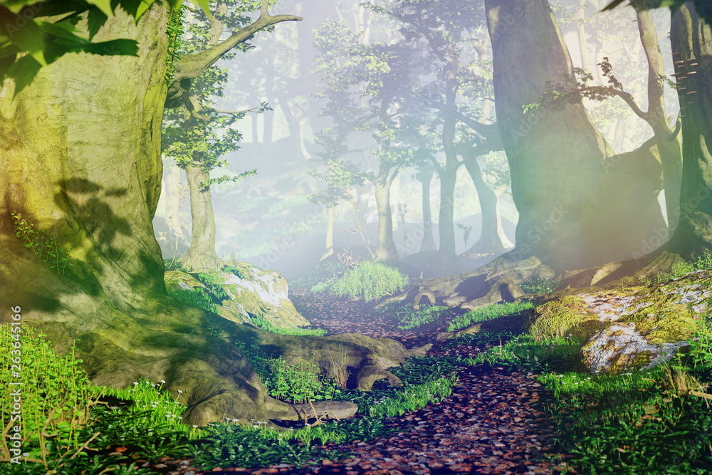 Fototapety, obrazy: path through magical forest at sunrise, beautiful old trees fantasy landscape