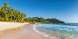 Panoramic view of paradise beach. Sunny beach with palms and turquoise sea.