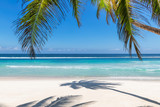 Paradise beach with white sand and coco palms. Summer vacation and tropical beach concept.