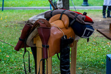 Saddle With Bugs And Stirrups On Horse's Mannequin