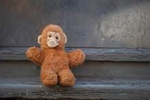 Lost Soft Toy Monkey