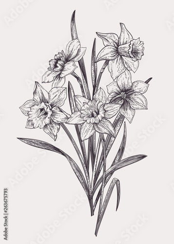 Bouquet with daffodils. Canvas Print