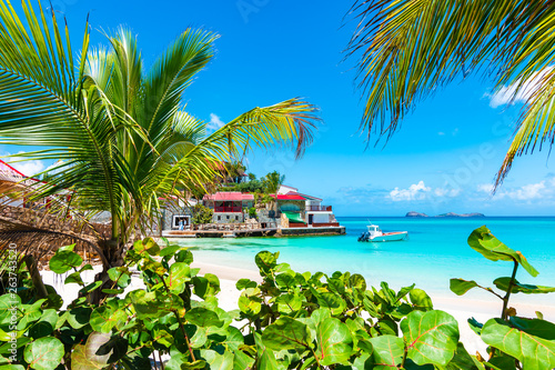 Cadres-photo bureau Palmier Palm trees on tropical beach, St Barths, Caribbean Island.