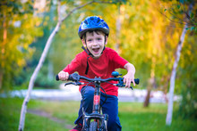 Happy Kid Boy Of 6 Years Having Fun In Autumn Forest With A Bicycle On Beautiful Fall Day. Active Child Making Sports. Safety, Sports, Leisure With Kids Concept