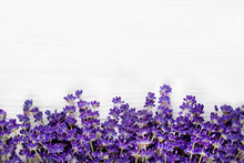 Natural Background With Lavender Flowers