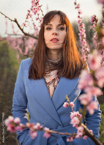 Fototapeta young caucus woman in blue coat posing in blossom peach garden with sun back lig