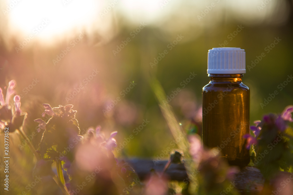 Fototapety, obrazy: Natural remedies, aromatherapy - bach therapy.