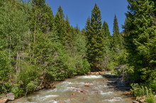 Geneva Creek Near Guanella Pass Road (Pike And San Isabel National Forest, Park County, Colorado, USA)