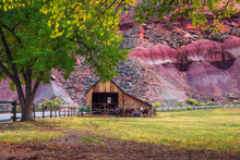Historic Barn With Horses In The Capitol Reef National Park, Utah