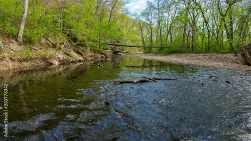 Canvas Print River View at Tanyard Creek Nature Trail