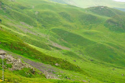 Fototapeta Alpine peaks of Grindelwald and Jungfrau. Landskape background of Bernese highland. Alps, tourism, journey, hiking concept. obraz na płótnie