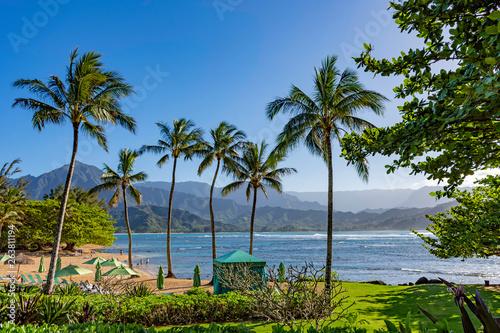 Poster Palmier Beach at a resort at Hanalei Bay and the Na Pali coast Princeville Kauai Hawaii USA
