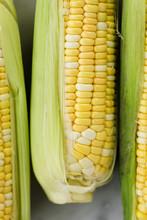 Ears Of Corn With Husk