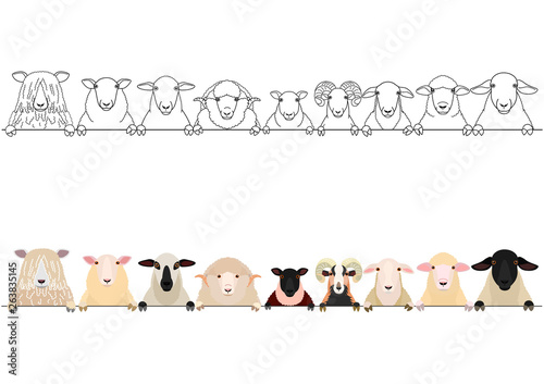 Valokuvatapetti various sheep heads border set