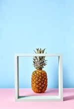 Tropical Pineapple Fruit Single Standing Behind A White Square Frame On Duotone Pink-blue Background