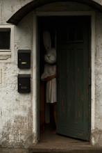 A Man In A Terrifying Rabbit Mask
