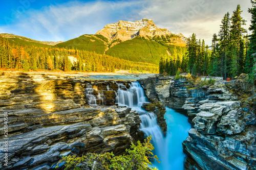 Poster de jardin Kaki Athabasca Falls in autumn, Jasper National Park, Alberta, Canada