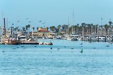 Santa Barbara Harbor. Sand Beach, Boats And Pelicans