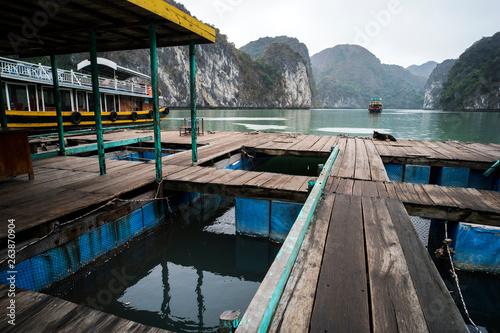 Foto  floating fish farm in ha long bay vietnam