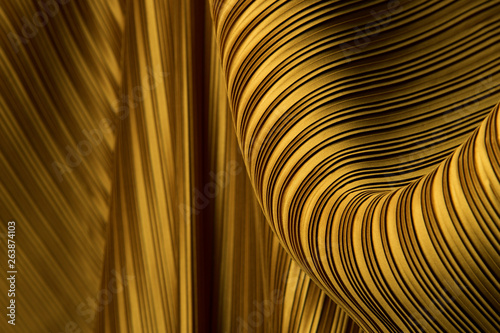 Fotografia, Obraz  Pleat Fabric in long line drape with shadow, pleated style of textile pattern in