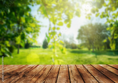 Photo sur Aluminium Jardin a Wooden table and spring forest background