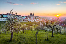 View Over Prague Skyline With From Petrin Hill At Spring