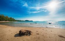 Idyllic Tropical Beach, Palm, ...