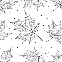 Black And White Maple Leaves Vector Seamless Pattern
