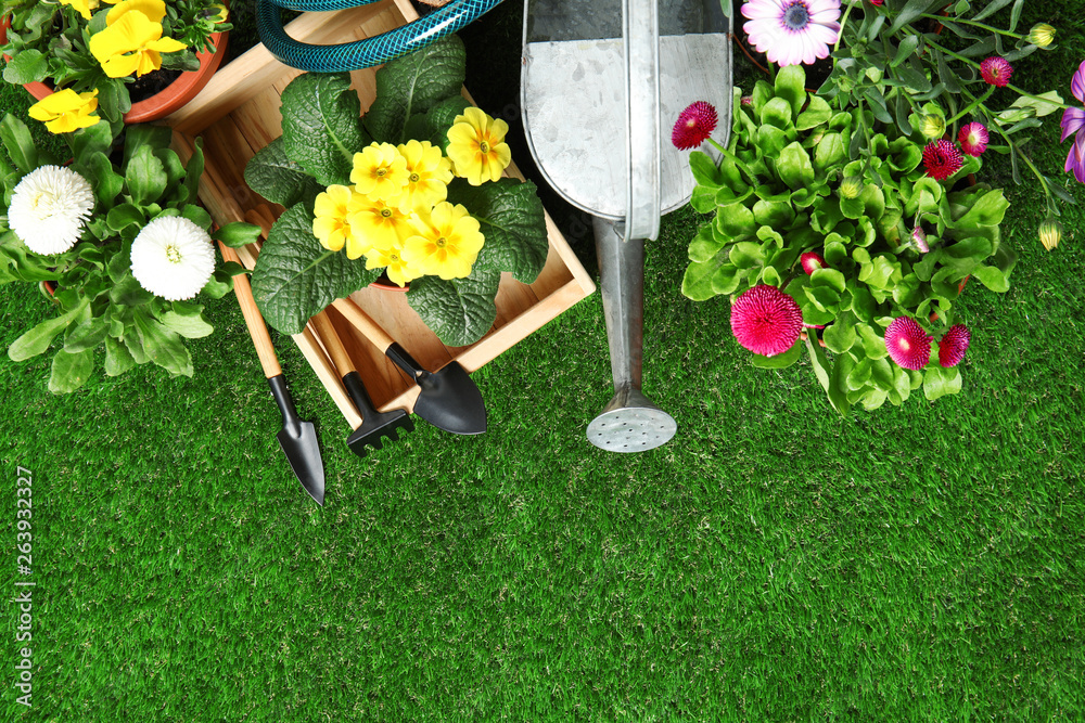 Fototapety, obrazy: Flat lay composition with gardening equipment and flowers on green grass