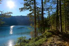 Germany, Bavaria, Eibsee Lake , Forest