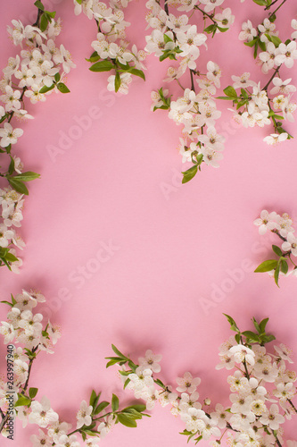 In de dag Candy roze Spring or summer background.Flowering tree branches on the pink background.Top view.Copy space.
