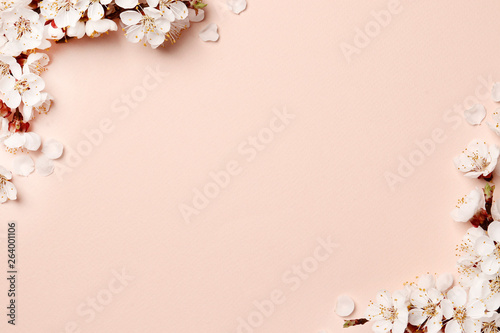 Photo Spring floral background, texture and wallpaper