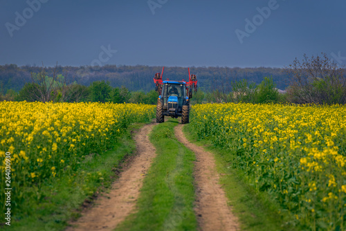 Tractor machine used in agriculture on a dirt road between two canola cozla fiel Wallpaper Mural