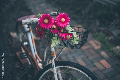 Türaufkleber Fahrrad Spring in Ohio