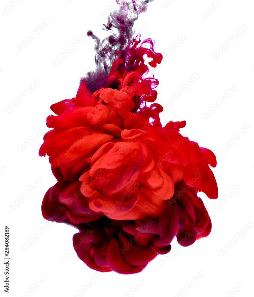 Fototapety, obrazy: paint in water color liquid red black