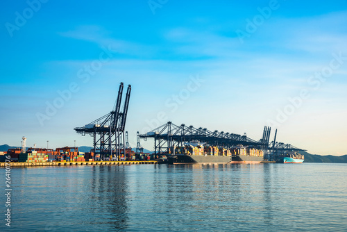 In de dag Brug Industrial port container crane with a cruise ship