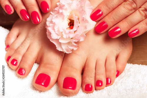 Canvas Prints Pedicure Pink manicure and pedicure with flower close-up on white background, top view