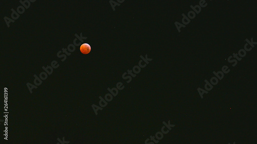 Fotografia, Obraz  Eclisse di luna rossa nel mese di gennaio