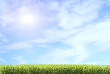 Background Of Green Grass Agai...